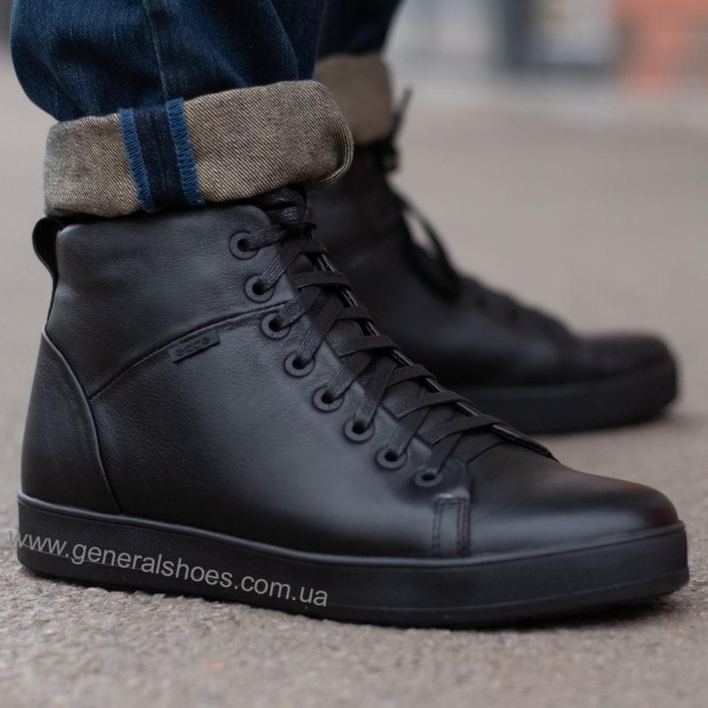Мужские зимние кожаные ботинки Ed-Ge 551